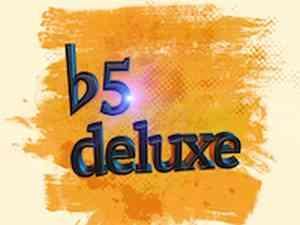 b5 deluxe: Logo